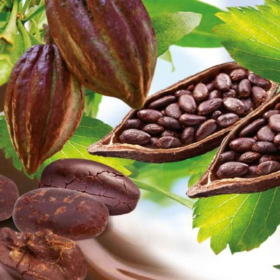 boabele-de-cacao-proprietati-si-beneficii